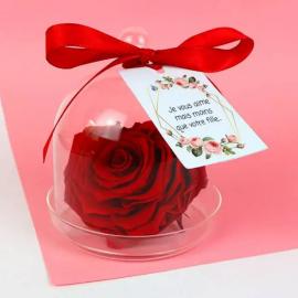 Rose rouge éternelle en forme de cœur